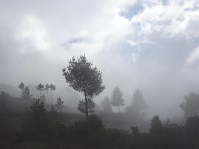 La brume se lève, et dévoile des sommets grandioses