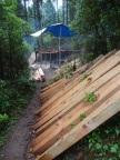 Les arbres coupés et débités en planches, à la main